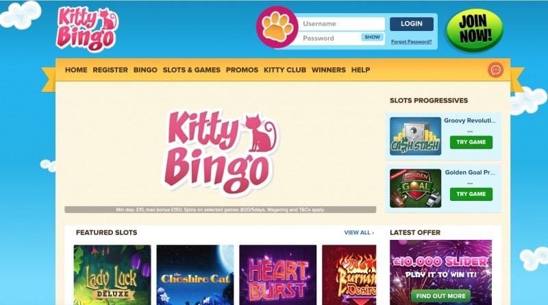 Kitty Bingo Free Spins